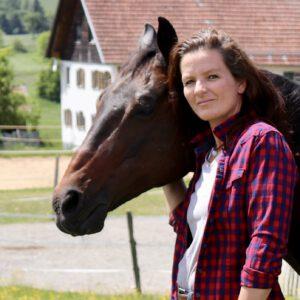 Mensch-Pferd-Training